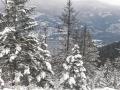 Cl Snow
