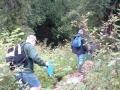 Volunteers, Kokanee Enumeration - Sandner Creek